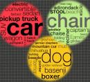 picture of word cloud with grouped terms
